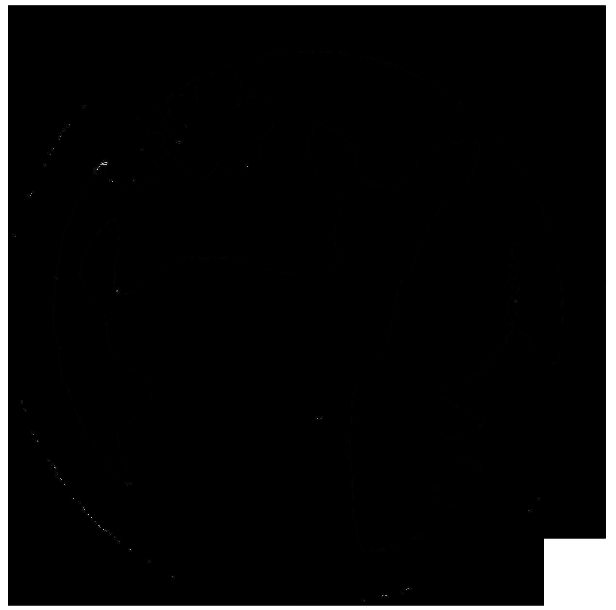 奈良ピックルス