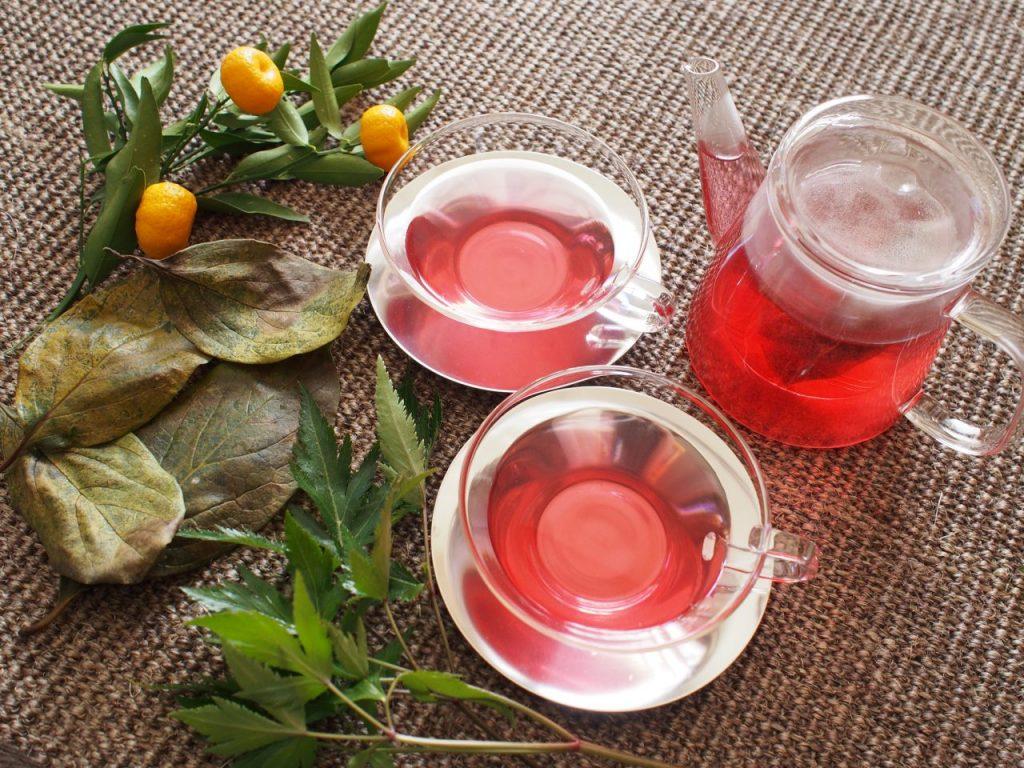 「和漢めぐり茶®」 デトックスティーで免疫力UP!